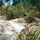 Josephine Falls, Queensland, Australia by Kathie Nichols