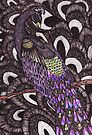 Colour Peacock by samclaire