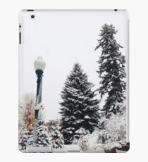 Snow Trees iPad Case/Skin