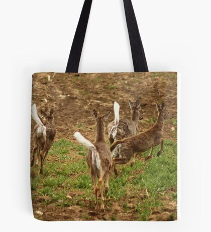 Four Whitetails at Holy Hill Tote Bag