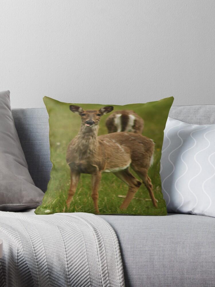 Deer Say's Hello by Thomas Murphy