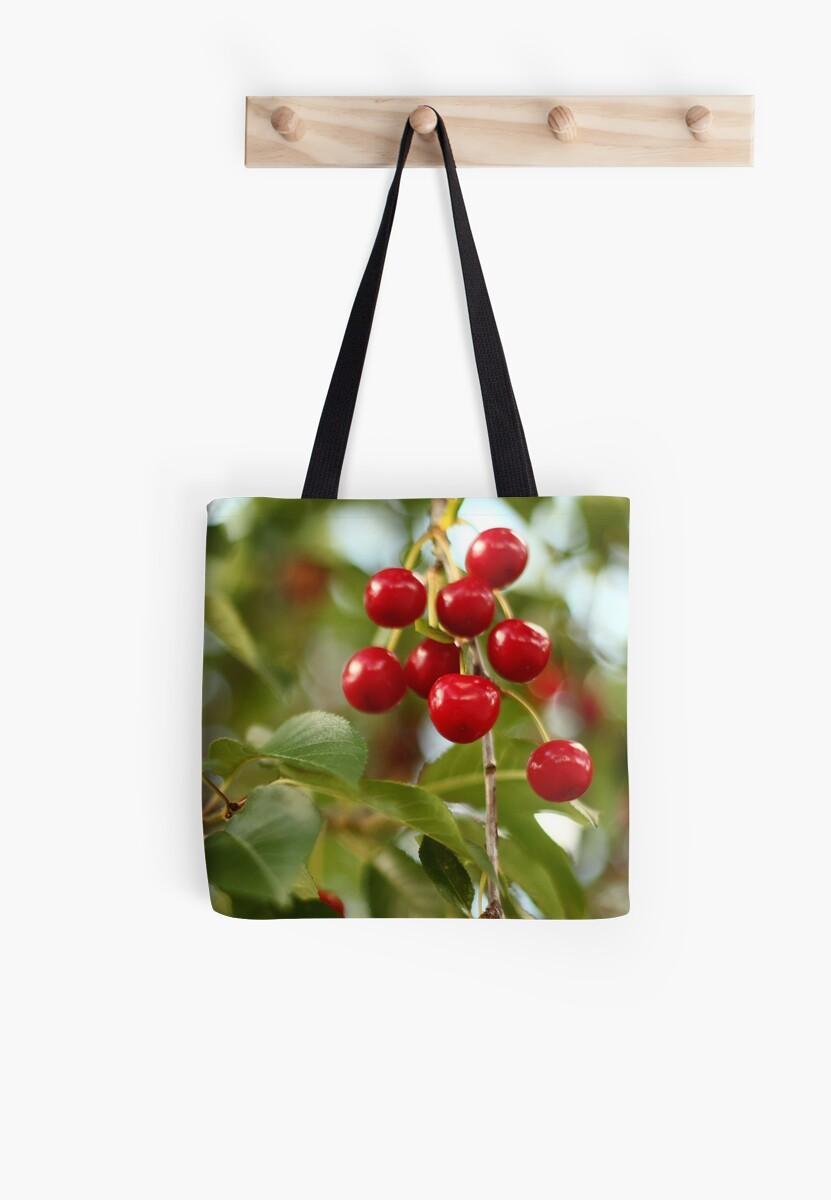 Cherries on the Cherry Tree by Thomas Murphy