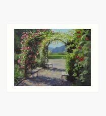 Vineyard Gardens Art Print