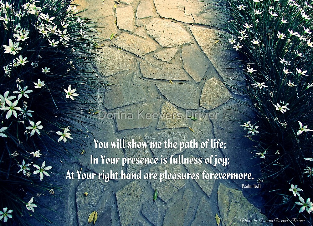 Quot Show Me The Path Of Life Quot By Donna Keevers Driver