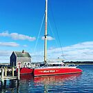 Mad Max Edgartown Harbor by Larry Glick