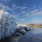 Poolburn Dam in Winter by zoopita