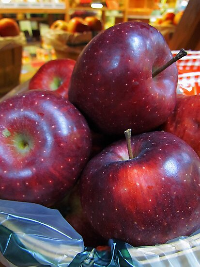 Red Delicious by Nevermind the Camera Photography