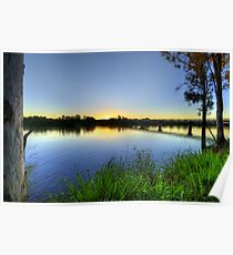 Under The Gum Trees Poster