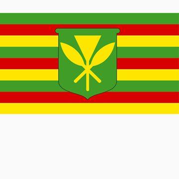 HAWAIIAN FLAG by GlideMedia
