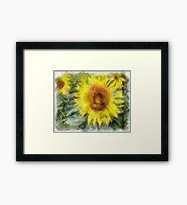 Sonnenblumen Framed Print