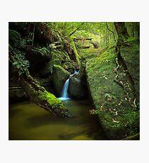 Salote Pool Photographic Print