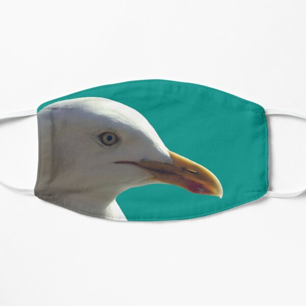 Blue Frank, the friendly seagull. Mask