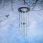 On a Winter's Night by Scott Mitchell