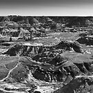 The badlands(Alberta) by sbc7
