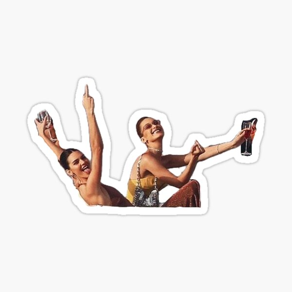 kendall and bella middle finger Sticker