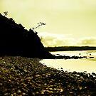 Byron Beach by mark thompson
