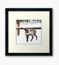 Reindeer for Christmas. Framed Print