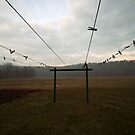 clotheslines by lucy loomis