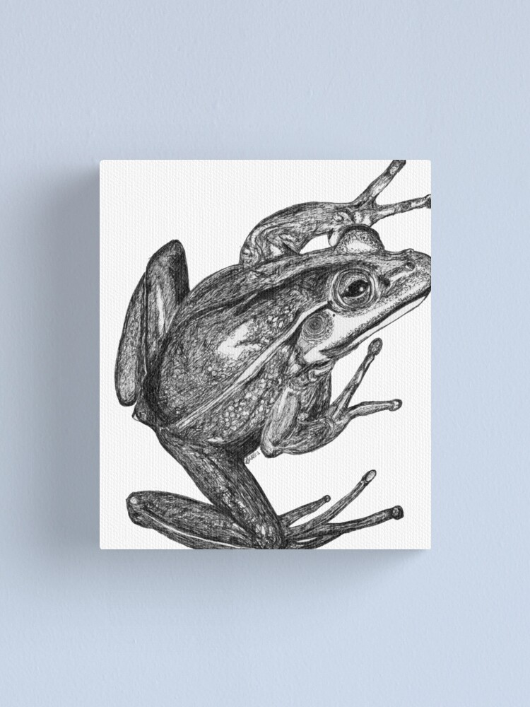 Alternate view of Vonny the Frog Canvas Print