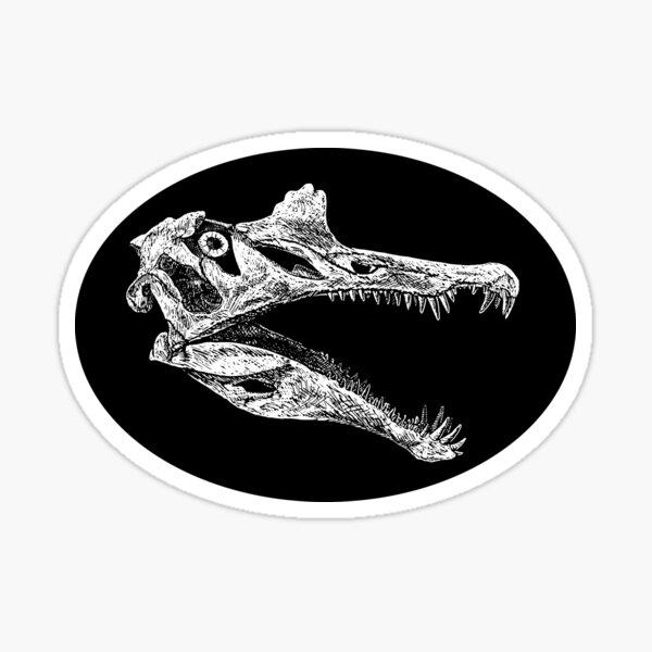 Spinosaurus Skull (no background) Sticker