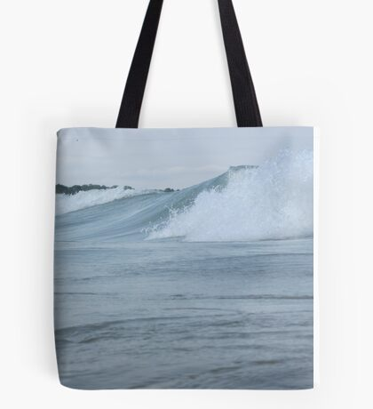Surfs up in Whitefish Bay Wisconsin Img 406 Tote Bag