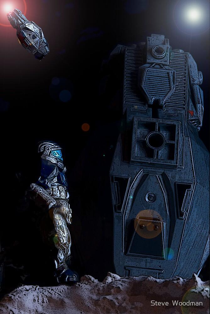 Heavy landing by Steve  Woodman