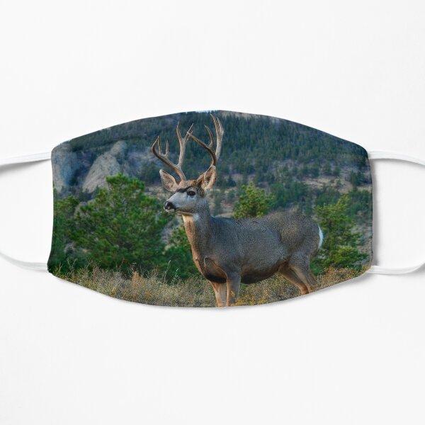 Mule Deer Buck  Flat Mask