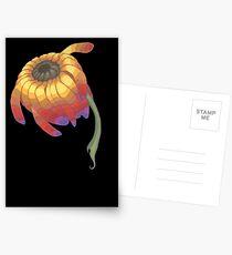Rainbow Flower Postcards