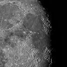 Moon Up Close by Bill  Watson