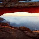 Desert Fog by Chad Dutson