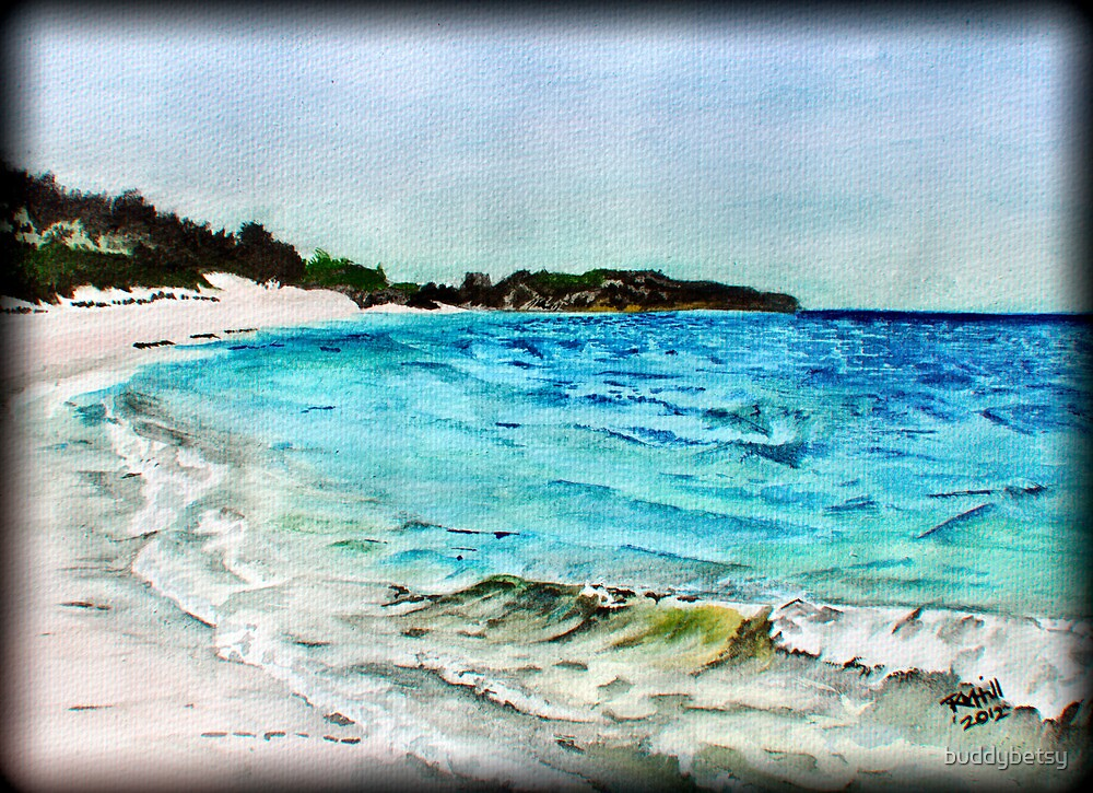 Horseshoe bay { Bermuda } by buddybetsy