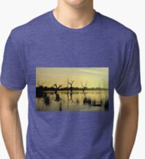 Sculptures in the Lake Tri-blend T-Shirt