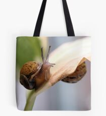 Snail hide and seek  Tote Bag