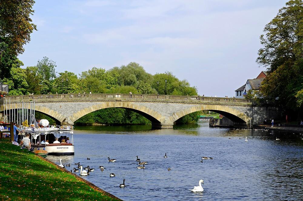 Workman Bridge and The River Avon  by Rod Johnson