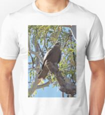 Black Kite, Milvus Migrans Unisex T-Shirt