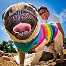 Pug - Brighton Pride Dog Show by Heather Buckley