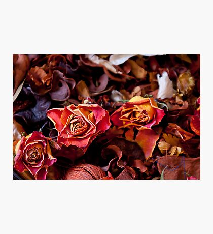 Rustic Flowers Photographic Print