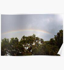 Neighborhood rainbow Poster