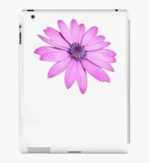 Single Pink African Daisy Against Green Foliage Isolated iPad Case/Skin