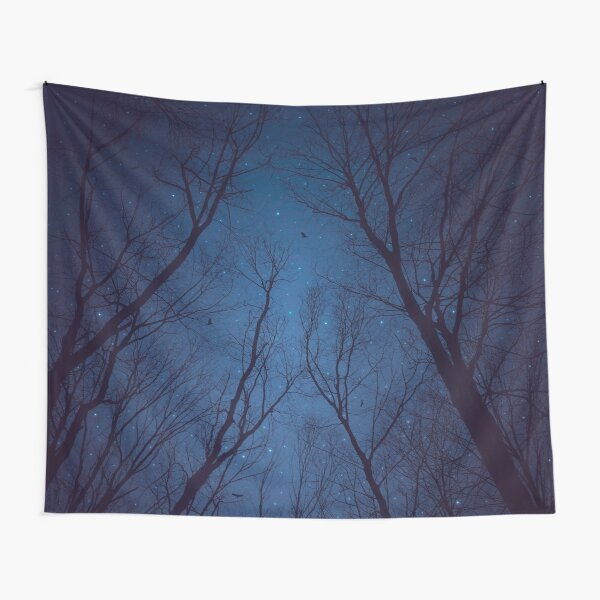I Have Loved the Stars too Fondly Tapestry