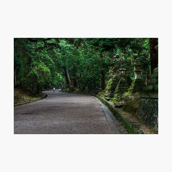 Path of the Shrines Photographic Print