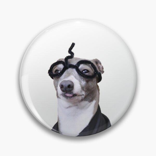 Kermit Potter Pin