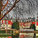 Hvedholm Castle by imagic