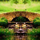 My Paradise by Dawn Becker