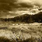 Sprague Lake, Rocky Mountain National Park by Daniel H Chui