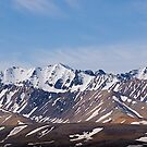 Polychrome Mountains #1, Denali National Park, Alaska, 2012. by johnrf