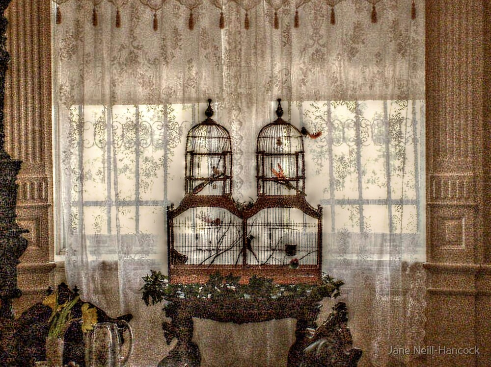 Victorian Bird Cages and Lace Curtians by Jane Neill-Hancock