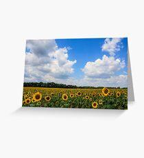 Sunflower Fields Forever Grußkarte