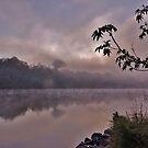 «Foggy Morning» de M. Fittock