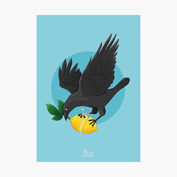 Lemon crow Photographic Print